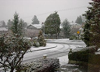 [Snow coming down on 24 Dec 2002 in Burnaby]